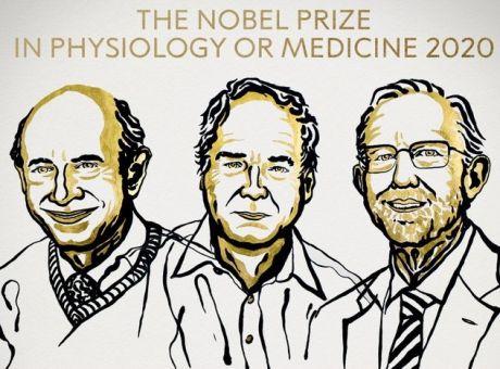 Νόμπελ Ιατρικής 2020: Στους επιστήμονες που ανακάλυψαν τον ιό της ηπατίτιδας C - Επιστήμη | News 24/7