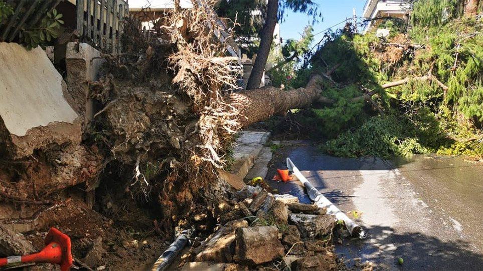 Κακοκαιρία στο Νέο Ηράκλειο: Τρεις τραυματίες και μεγάλες καταστροφές - Δείτε βίντεο