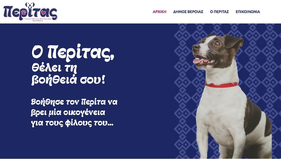 Περίτας»: Η νέα ιστοσελίδα του Δήμου Βέροιας για την υιοθεσία αδέσποτων σκύλων | ΚΕΔΕ