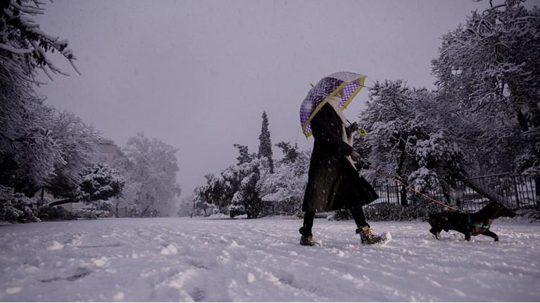 Αποτέλεσμα εικόνας για κακοκαιρία Μήδεια Αθήνα χιόνι διονυσιου αρεοπαγιτου