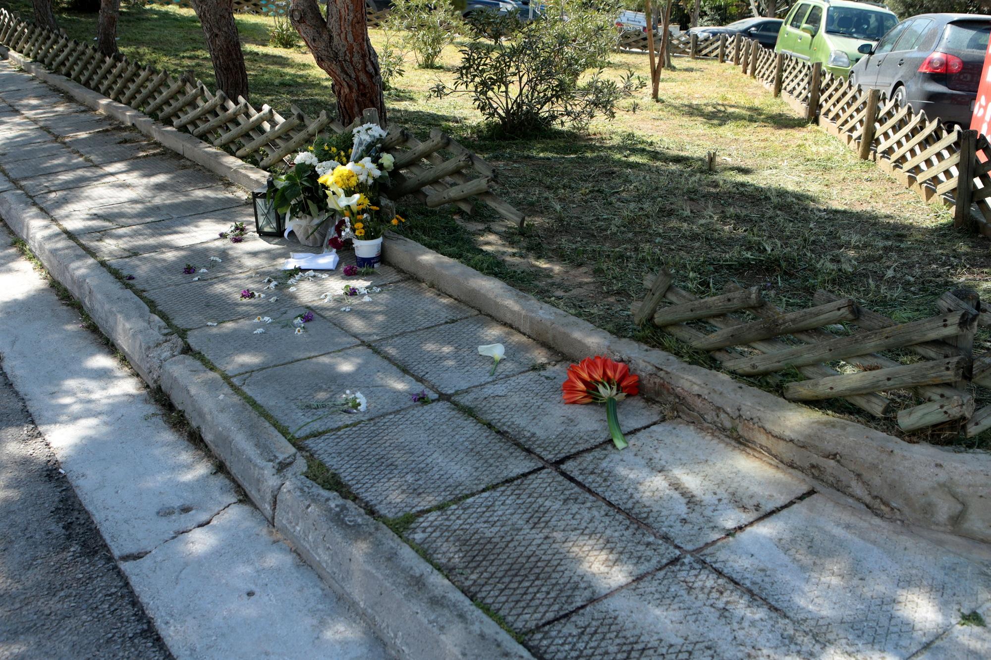Δολοφονία Καραϊβάζ: Συμβόλαιο θανάτου βλέπει η ΕΛ.ΑΣ. (video) - ertnews.gr