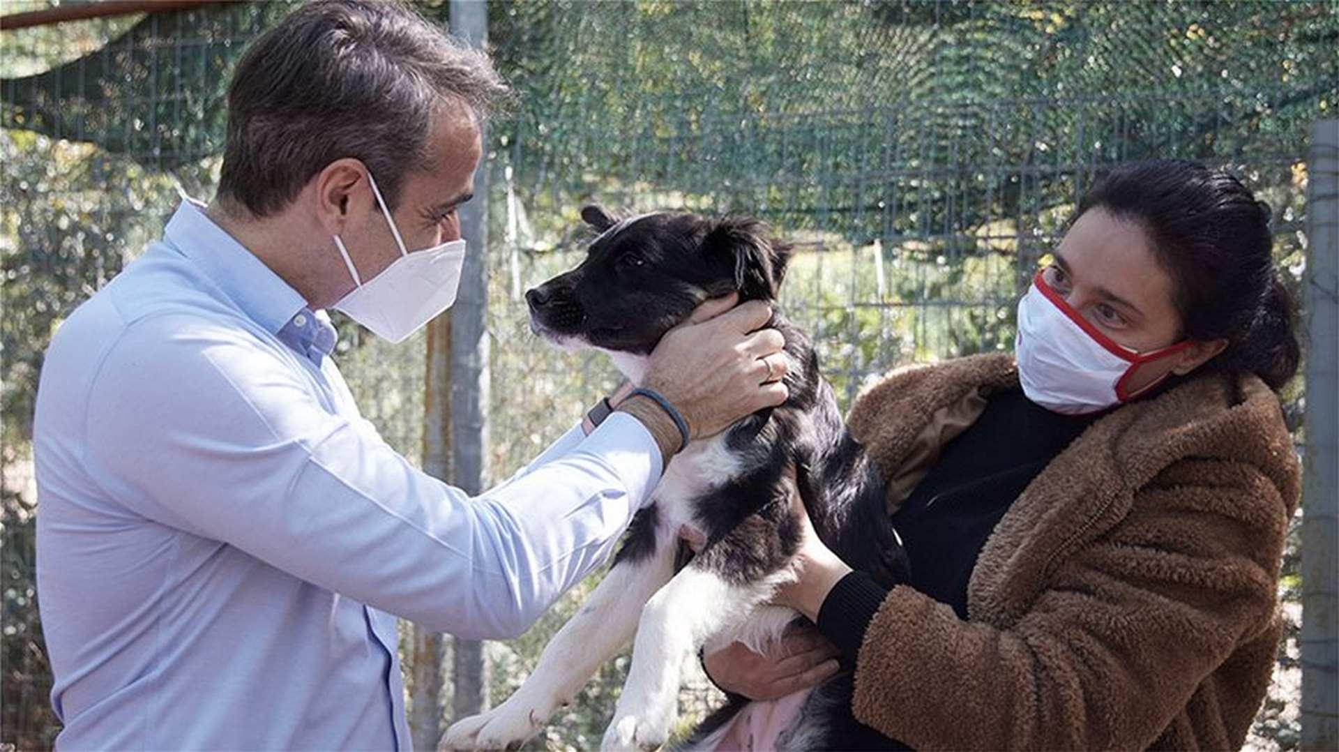 Ελλάδα: Παγκόσμια Ημέρα Αδέσποτων | Στο καταφύγιο ζώων της Ηλιούπολης ο Μητσοτάκης (Βίντεο)