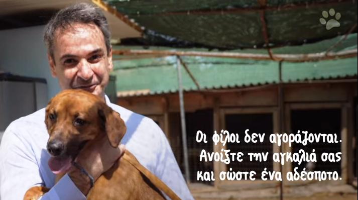 """Σε καταφύγιο αδέσποτων ζώων ο Κυριάκος Μητσοτάκης:""""Οι φίλοι δεν αγοράζονται Ανοίξτε την αγκαλιά σας και σώστε ένα αδέσποτο""""(video) - EPIRUS TV NEWS"""